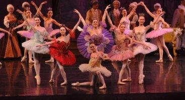 """Baletas """"MIEGANČIOJI GRAŽUOLĖ"""""""