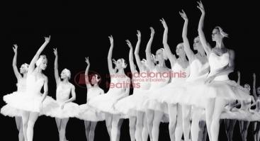 """Baletas """"GULBIŲ EŽERAS"""""""