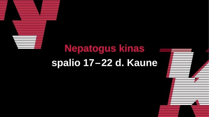 Nepatogus kinas Kaune 2017