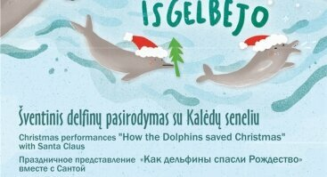 """""""Kaip delfinai Kalėdas išgelbėjo"""""""