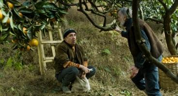 "Gruzinų kino vakaras: Zaza Urušadze ""Mandarinai"""