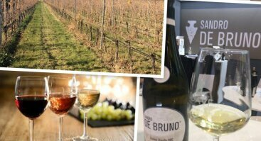 Itališko vyno degustacija