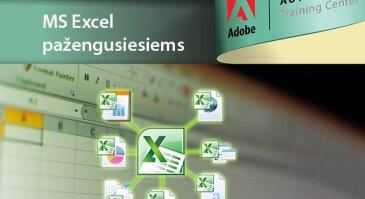 MS Excel pažengusiesiems