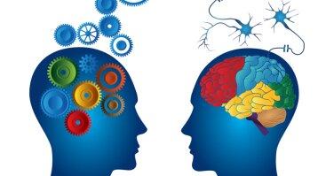 NLP  Neurolingvistinis programavimas