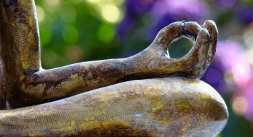 "Specialus Meditacijos ""Mindfulness"" užsiėmimas"
