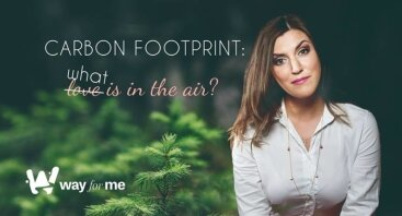 Carbon footprint: what is in the air?