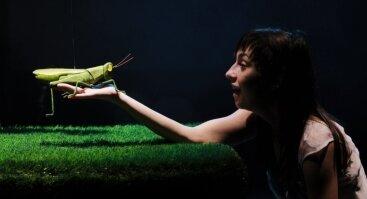 """Sankt Peterburgo didžiojo lėlių teatro spektaklis """"Šimtas keturiasdešimt  dūžių per minutę"""""""