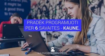 6 savaičių programavimo mokymai pradedantiesiems