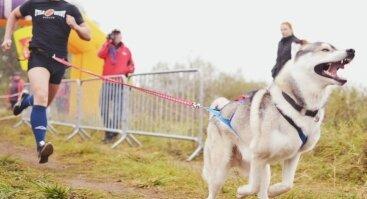 Bėgimas su šunimis