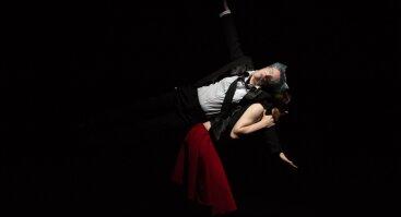 """Apeirono teatro spektaklis """"PALIKUONIS"""" (premjera)"""