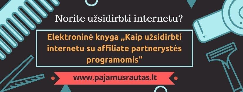 Nuotoliniai pajamų uždirbimo internetu mokymai