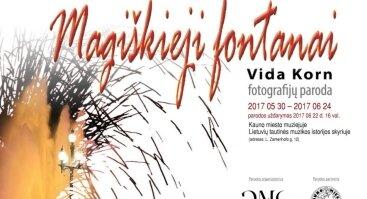 """Menininkės Vidos Korn fotografijų paroda """"Magiškieji fontanai"""""""