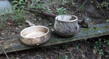 Raugo keramikos kursai Vilniuje