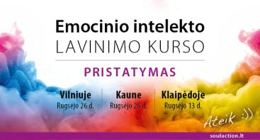 VILNIUJE: NEMOKAMAS Emocinio intelekto lavinimo kurso pristatymas!