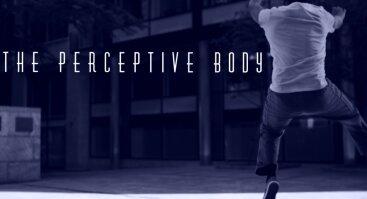 Texture&Movement/ The Perceptive Body
