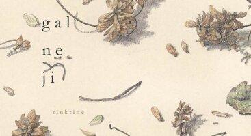 """D. Kajoko knygos """"Poezija, o gal ne ji"""" sutiktuvės"""