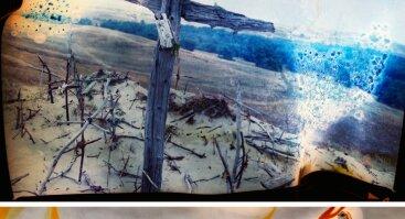 """Aušros Barysienės fotografijų paroda """"Tokia nuotrauka II"""""""