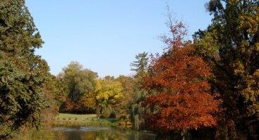 Paskaita apie botanikos sodų konferenciją Budapešte