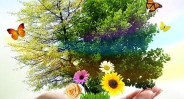 Tiesūs keliai į laimę ir gerą sveikatą