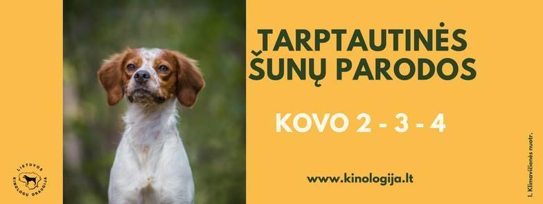 3 Tarptautinės šunų parodos