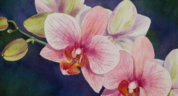 """Tapybos improvizacija """"Orchidėja"""""""