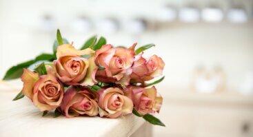 Kvapnus romantiškas mergvakaris
