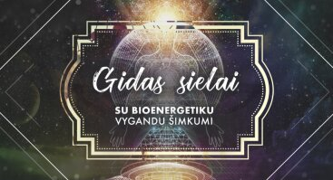 Gidas sielai: Bioenergetika, gydymas, intuicija - Panevėžys