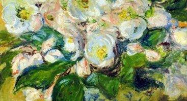 C. Monet Rožių puokštė