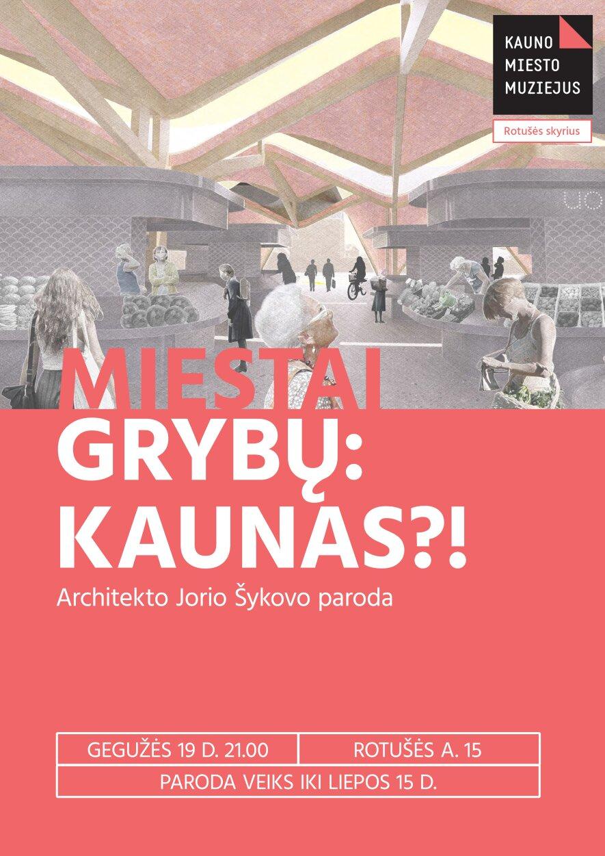 Miestai grybų: Kaunas?!