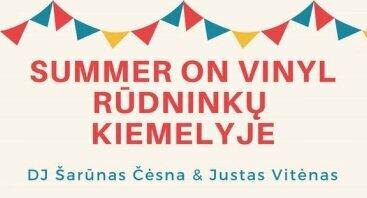 Summer on vinyl Rūdninkų knygyno kiemelyje