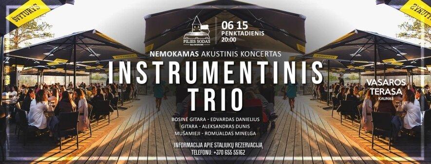 Instrumentinio trio nemokamas koncertas