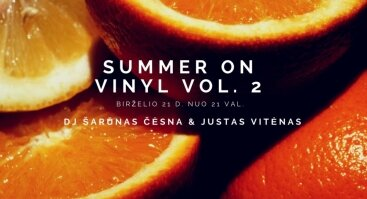 Summer On Vinyl Vol. 2 Rūdninkų knygyno kiemelyje