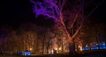 "Ugnies festivalis ""PASAKA"""