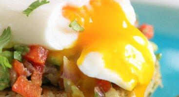 Kiaušinių skystu tryniu ruošimo dirbtuvės