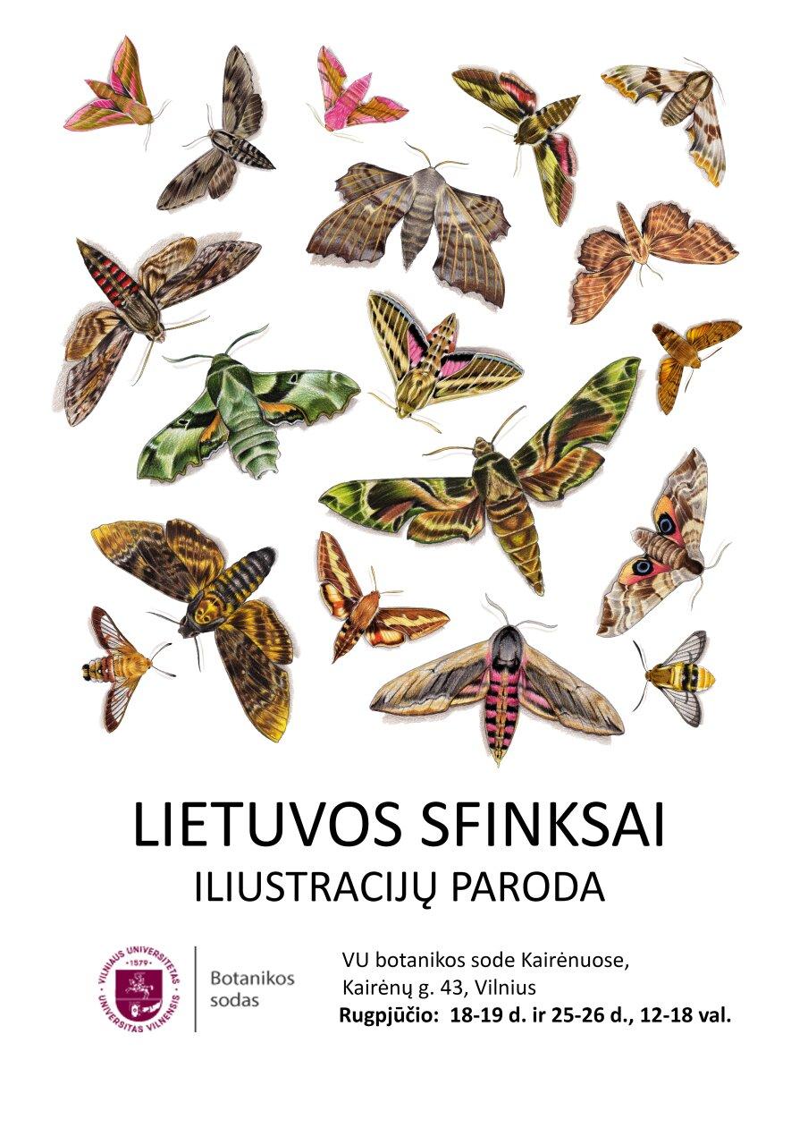 Lietuvos sfinksai. Iliustracijų paroda