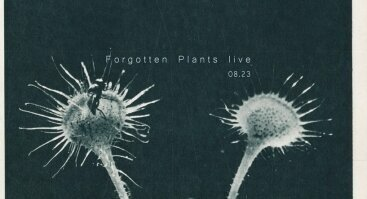 Forgotten Plants live