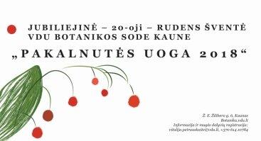 Rudens šventė PAKALNUTĖS UOGA 2018
