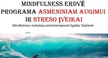 Mindfulness erdvė. Programa asmeniniam augimui ir streso įveikai