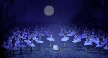"""Didžiausias visų laikų """"GULBIŲ EŽERAS"""" (Peterburgo baleto trupė)"""