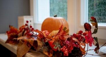 Helovino minėjimas Viloje Komodoje šeimų programa