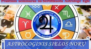 ASTROLOGINIS SIELOS NORŲ KOLIAŽAS 2019 metams - Praktinis seminaras