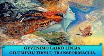 GYVENIMO LAIKO LINIJA   GILUMINIŲ TIKSLŲ TRANSFORMACIJA   PRAKTINIS SEMINARAS Vilniuje