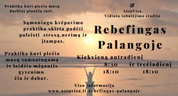 Rebefingas Palangoje