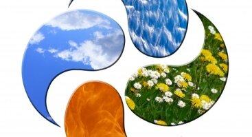 Bioenergetikos mokymai I lygis: Bioenergetikos pagrindai