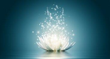 Emocijų valdymas - 2 dienų meditacinė kelionė į savęs pažinimą