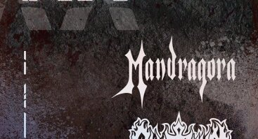 Mandragora XX