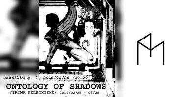 "Parodos ""Ontology of shadows"" atidarymas"