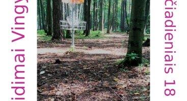 Diskgolfo žaidimas Vingio parke