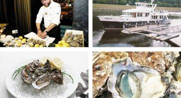 Austrių degustacija laive PERLAS