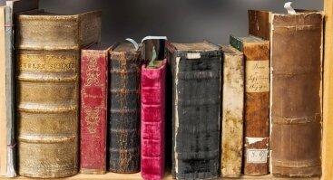 PGD 2019: Knygų turgelis E. Levino skvere